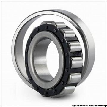 360 mm x 440 mm x 80 mm  NSK RSF-4872E4 cylindrical roller bearings